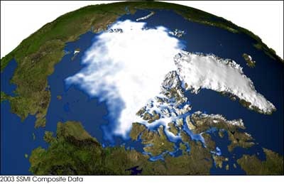 Arctic_ice2003.jpg